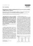 "Báo cáo khoa học: "" Experimental evaluation of pathogenicity of Lactococcus garvieae in black rockfish (Sebastes schlegeli)"""