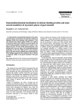 """Báo cáo khoa học: """"Immunohistochemical localization of calcium binding proteins and some neurotransmitters in myenteric plexus of goat stomach"""""""