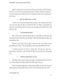 sách ASTERISK5 tiếng việt phần 2