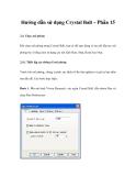 Hướng dẫn sử dụng Crystal Ball – Phần 15
