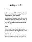 Kỹ thuật Trồng cây Sa nhân