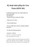 Kinh nghiệm nhân giống lúa Nam Thơm (KDM 105)
