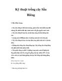 Kinh nghiệm trồng cây Sầu Riêng