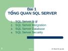 Giới thiệu SQL Server