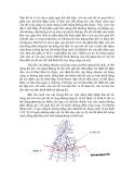 Sổ tay thủy văn cầu đường - TÍNH TOÁN THUỶ LỰC CÔNG TRÌNH CẦU TRONG TRƯỜNG HỢP ĐẶC BIỆT part 4
