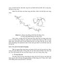 Sổ tay thủy văn cầu đường - Dự báo quá trình diễn biến lòng sông part 2