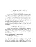 Sổ tay thủy văn cầu đường - Dự báo quá trình diễn biến lòng sông part 3
