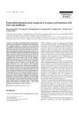 "Báo cáo khoa học: ""Immunohistochemical study of galectin-3 in mature and immature bull testis and epididymis"""