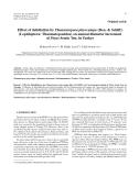 "Báo cáo lâm nghiệp: ""Effect of defoliation by Thaumetopoea pityocampa (Den. & Schiff.) (Lepidoptera: Thaumetopoeidae) on annual diameter increment of Pinus brutia Ten. in Turkey"""