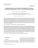 """Báo cáo lâm nghiệp: """" Managing diameter growth and natural pruning of Parana pine, Araucaria angustifolia (Bert.) O Ktze., to produce high value timber"""""""