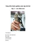 Sáng kiến kinh nghiệm môn tập bài hát lớp 2 – con chim non