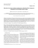 """Báo cáo lâm nghiệp: """"Diversity of ectomycorrhizal symbionts in a disturbed Pinus halepensis plantation in the Mediterranean region"""""""