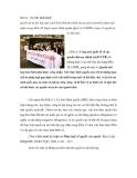 SỐ 18 - TỰ DO HỘI HỌP
