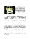 SỐ 16 - TỰ DO NGÔN LUẬN