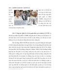 SỐ 4 - KHÔNG BỊ BUỘC LÀM NÔ LỆ