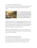 SỐ 5 - QUYỀN CÓ CƠ CHẾ BẢO VỆ QUYỀN