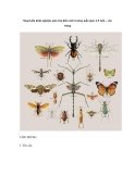 Sáng kiến kinh nghiệm môn tìm hiểu môi trường mẫu giáo 4-5 tuổi – côn trùng