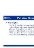 Polyphase Merge sort