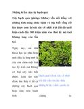 Những bí ẩn của cây bạch quả