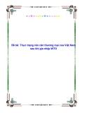 Đề tài: Thực trạng cán cân thương mại của Việt Nam sau khi gia nhập WTO