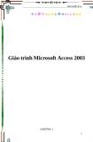Giáo trình về Microsoft Access 2003