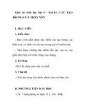 Giáo án sinh học lớp 6 - Bài 15: CẤU TẠO TRONG CỦA THÂN NON