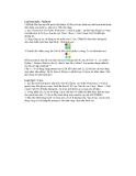 Giáo trình hình thành quy trình điều khiển công cụ transfrom direction để tạo layer quick mask p6