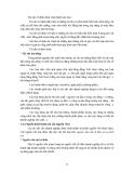 Giáo trình hình thành quy trình điều khiển kỹ thuật kiểm toán trong hạch toán kinh tế p2