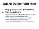 Ngành Du lịch Việt Nam