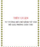 """Tiểu luận tư tưởng Hồ Chí Minh: """" Tư tưởng Hồ Chí Minh về cách mạng giải phóng dân tộc"""""""