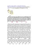 Tổng Quan Về Dịch Vụ Domain Name System (DNS) (Phần 1)