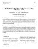"Báo cáo khoa học: "" Identification of PCR-based markers linked to wood splitting in Eucalyptus grandis"""