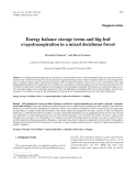 """Báo cáo khoa học: """"Energy balance storage terms and big-leaf evapotranspiration in a mixed deciduous forest"""""""
