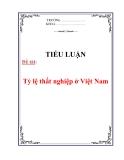 Tiểu luận: Tỷ lệ thất nghiệp ở Việt Nam