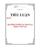 Tiểu luận: Bảo Hiểm Xã Hội Cho Người Lao Động ở Việt Nam
