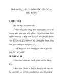 Hình học lớp 9 - §2. TỈ SỐ LƯỢNG GIÁC CỦA GÓC NHỌN
