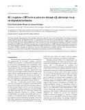 """Báo cáo y học: """"IGF-1 regulates cAMP levels in astrocytes through a β2-adrenergic receptor-dependant mechanism"""""""