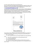 Cách viết và trình bày hiệu quả thư giao dịch bằng tiếng Anh