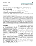 """Báo cáo y học: """"BRCA1 May Modulate Neuronal Cell Cycle Re-Entry in Alzheimer Disease"""""""