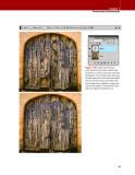 Adobe Photoshop CS4 for Photographers phần 2