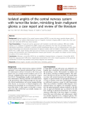 """báo cáo khoa học: """"Isolated angiitis of the central nervous system with tumor-like lesion, mimicking brain malignant glioma: a case report and review of the literature"""""""