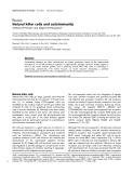 "Báo cáo y học: ""Natural killer cells and autoimmunity"""