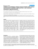 "Báo cáo y học: ""nhibition of established collagen-induced arthritis with a tumour α necrosis factor-α inhibitor expressed from a self-contained doxycycline regulated plasmid"""