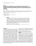 """Báo cáo y học: """"Biology of recently discovered cytokines: Interleukin-17 – a unique inflammatory cytokine with roles in bone biology and arthrits"""""""
