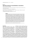 """Báo cáo y học: """"The clinical relevance of autoantibodies in scleroderma"""""""