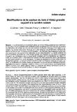"""Báo cáo khoa học: """"Modifications de la couleur du bois d'Abies grandis exposé à la lumière solaire"""""""