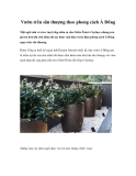 Vườn trên sân thượng theo phong cách Á Đông