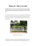 Hàng rào - Đẹp và an toàn