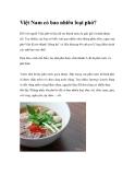 Việt Nam có bao nhiêu loại phở?