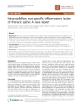 "Báo cáo khoa học: ""Intramedullary non-specific inflammatory lesion of thoracic spine: A case report"""